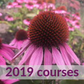 2019 courses at Ryton Organic Gardens