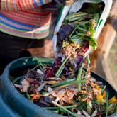 Composting - the cornerstone of organic growing