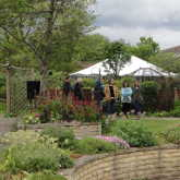 horticultural therpay in dementia care