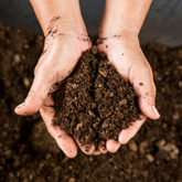 Health starts with soil