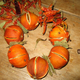 Make your own natural Christmas decorations
