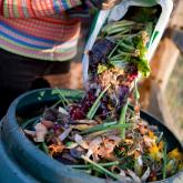 FREE Composting workshops