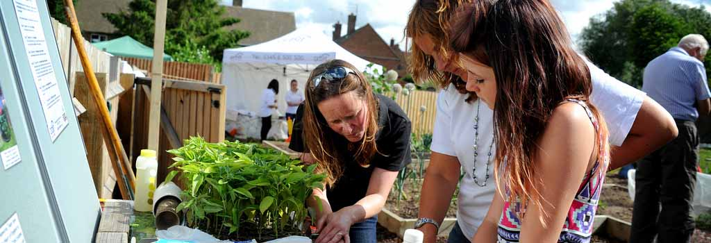 Community growing & composting projects