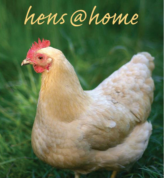 hens@home