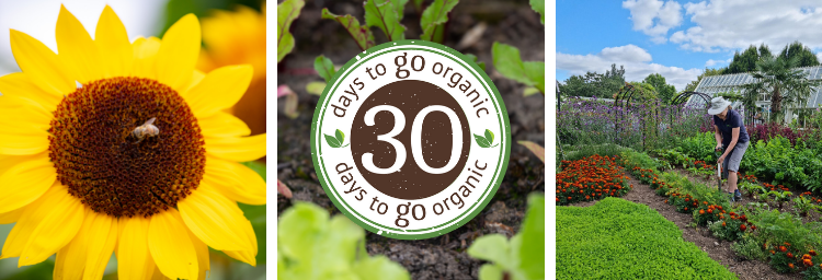 30 days to Go Organic - take the challenge for Organic September