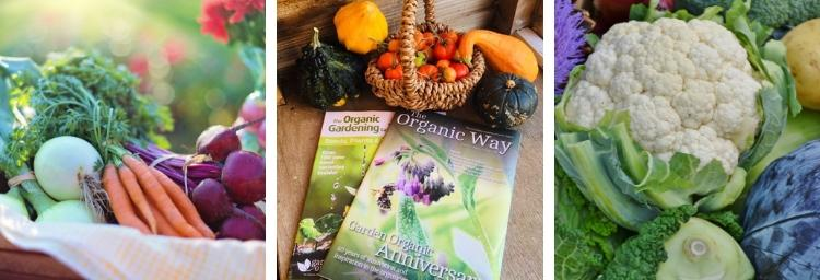 The Organic Way magazine